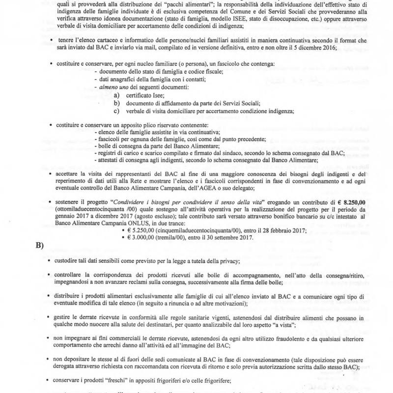 191_approvazione_progetto_associazione_banco_alime_pagina_04