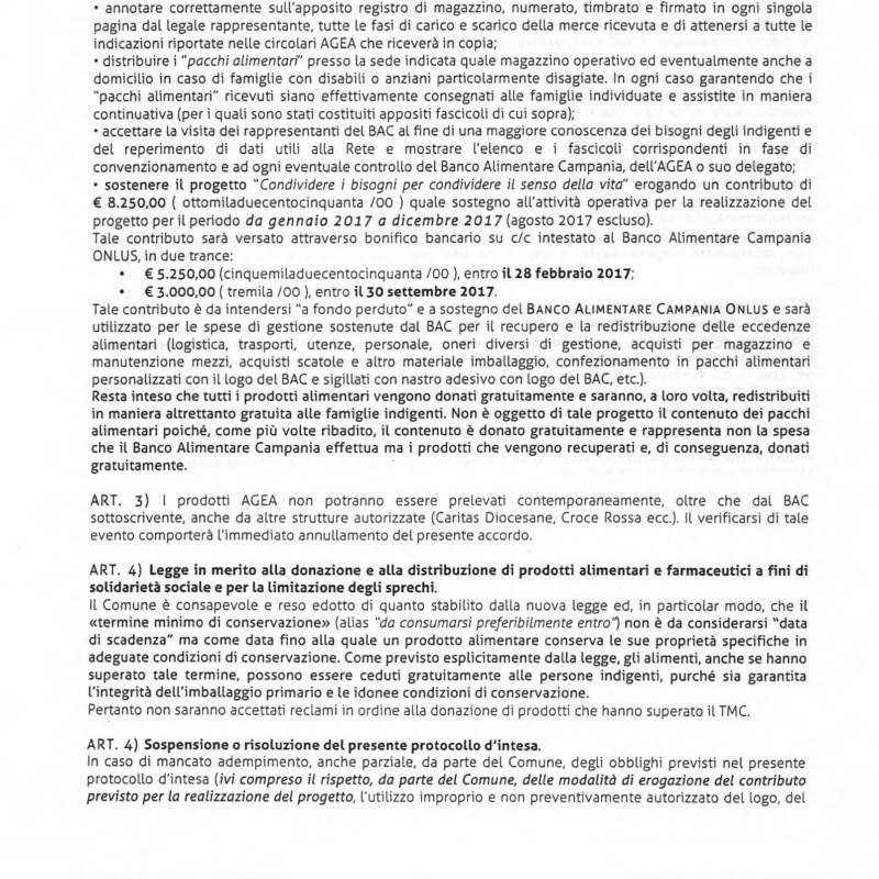 191_approvazione_progetto_associazione_banco_alime_pagina_08