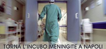 **ULTIMISSIMA**Choc in Campania, bimbo di due anni  muore in ospedale: sospetta meningite